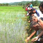 2	Zamboanga del Sur government officials and key officers of TVIRD join farmers in releasing the ducks into the ricefields in Bayog, Zamboanga del Sur.